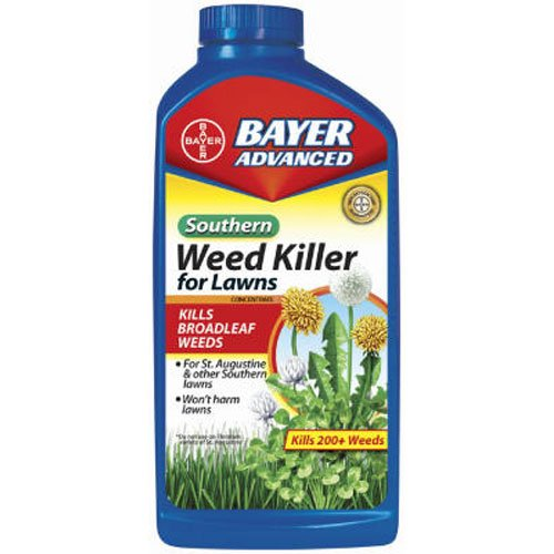 St Augustine Weed (Bayer Advanced 502890B Southern Weed Killer for Lawns Concentrate, 32-Ounce)
