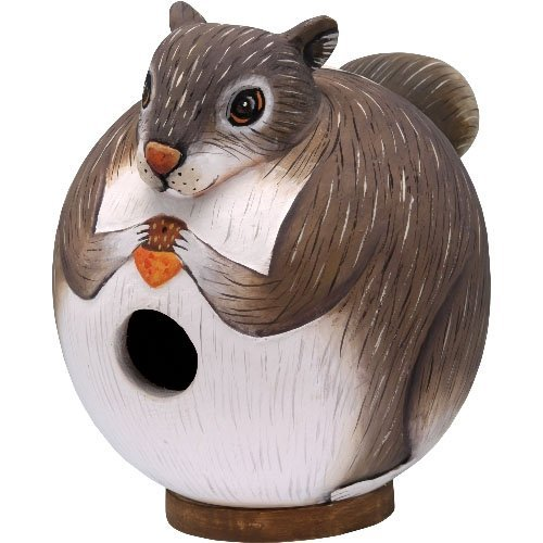 Squirrel Gord-O Birdhouse