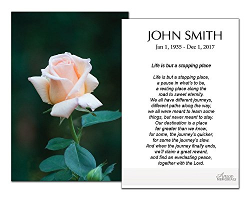 Funeral Memorial Prayer Cards (50 Cards) FPC1160EN Pink Rose (Custom Printed - Select Desired Prayer) ()
