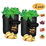 iTrunk 2 Pack Potato Grow Bags, 7 Gallon Plant Bag with Visualized Velcro Window and Handles, Nonwoven Fabric Pots Container for Potato, Carrot, Tomato