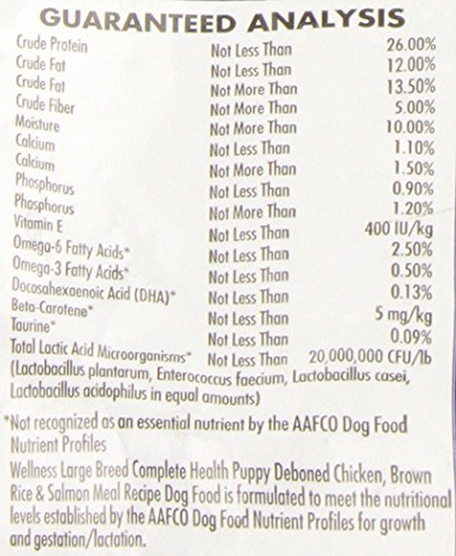 Wellness-Complete-Health-Natural-Dry-Large-Breed-Puppy-Food-Chicken-Salmon-Rice-30-Pound-Bag