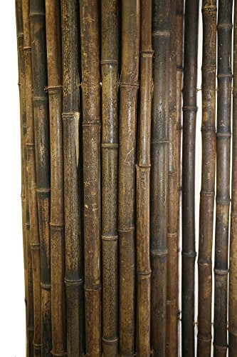 Backyard X-Scapes Black Rolled Bamboo Fence 1in D x 3ft H ...