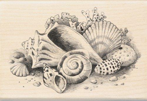 Inkadinkado Mounted Rubber 4 Inch Seashells