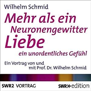 Mehr als ein Neuronengewitter Hörbuch