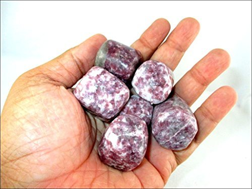 """Jet Lepidolite Tumbled Stone 100 Grams A++ Approx. 0.75"""" to 1""""inch High Grade Healing Metaphysical Jet International Crystal Therapy Booklet Image is JUST A Reference"""