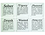 Drink Coasters, Set of Six, glass drink coasters that define the stages of drinking sober, tipsy, plastered, drunk, wasted, hungover,