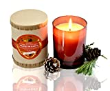 PURE PLANT HOME Peace On Earth 9 oz Candle~ Fill your home with love and gratitude with uplifting Orange, delicious Cinnamon and comforting Clove ~ Made in the USA!