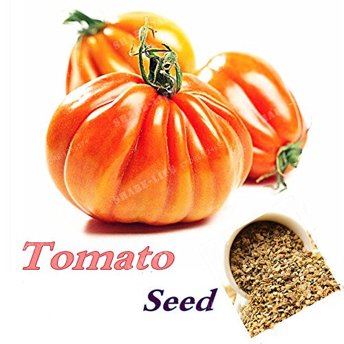 100 Seeds Tomato Seeds Giant Beefmaster Hybrid tomate NonGMO & DELICIOUS -