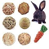CooShou Small Animals Play Balls Rabbit Rolling