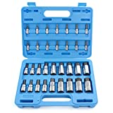 Capri Tools 30032 Master Hex Bit Socket Set, Metric & SAE, 32-Piece