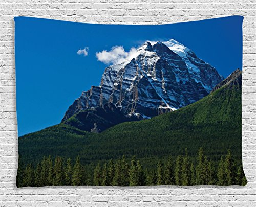 Scene Wall Tapestry (Mountain Tapestry Apartment Decor by Ambesonne, Snow Covered Peaks with Vivid Sky and Vibrant Trees National Park Scene, Bedroom Living Room Dorm Wall Hanging, 60 X 40 Inches, Green Blue White)