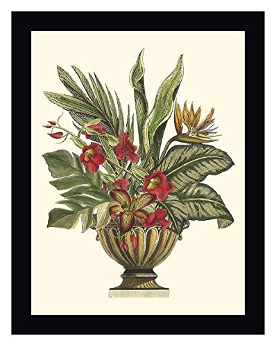 "Tropical Foliage in Urn II by Vision Studio - 12"" x 15"" Black Framed Giclee Canvas Art Print - Ready to Hang"