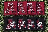 Victory Tailgate NCAA Arkansas Razorbacks Unisex 843844Cornhole Bag Set (All Weather), Multicolor, One Size