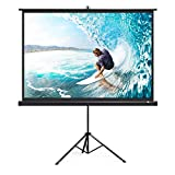 TaoTronics Projector Screen with Stand, TT-HP020 Indoor Outdoor Movie Projection Screen 4K HD 120' 4: 3 with Wrinkle-Free Design (Easy to Clean, 1.Gain, 160° Viewing Angle & Includes A Carry Bag)