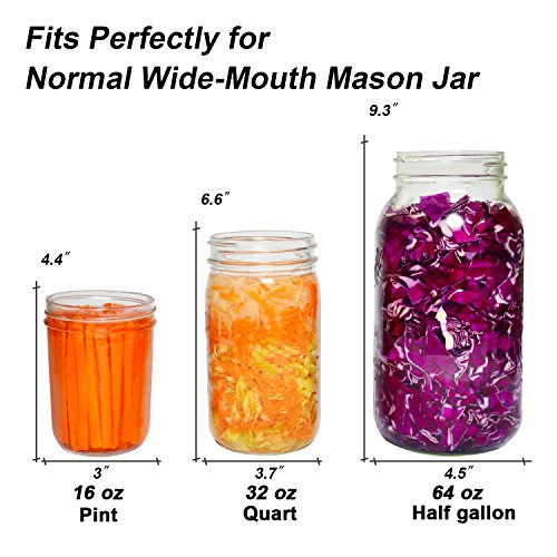 6-Pack Easy Fermentation Glass Weights with Handles for Keeping Vegetables Submerged During Fermenting and Pickling, Fits for Any Wide Mouth Mason Jars, FDA-Apporved Food Grade Materials by Siliware (Image #4)