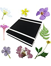 Rtree Microwave Flower Press, Leaf Press, Nature Press, Flower Pressing Kit Flower Press Kit Preservation Frame Arrangements Craft Quickly Drying Press Flowers Leaves Plant Foliage Specimen