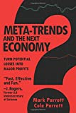 img - for Meta-Trends and the Next Economy book / textbook / text book