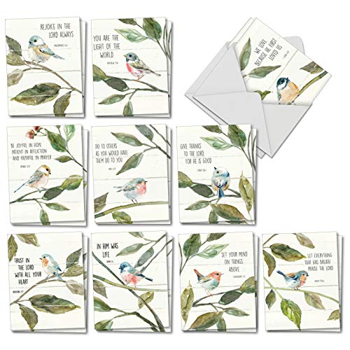- Scripture Birds: 20 Assorted Blank All Occasions Note Cards Featuring Songbirds Perched Reading Biblical Verse, with Envelopes. AM7108OCB-B2x10