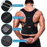Buyerzone Royal Posture Back Supported Brace - XL