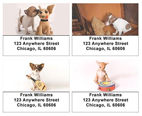 Cute Chihuahua Pups Address Labels