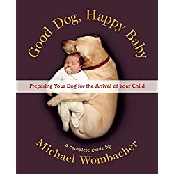 Preparing Your Dog for the Arrival of Your Child