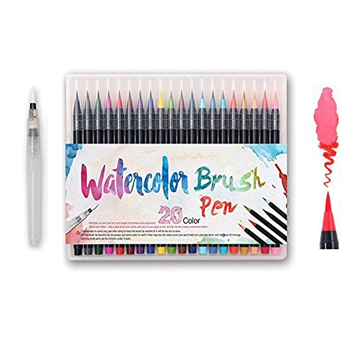 Watercolor Brush Pens Set - Premium Soft Flexible Dual Tips Coloring Brush Pen & Fineliner Color Marker Pens for Children Adult Coloring Sketching Books, Manga, Comic, Calligraphy (20 ()