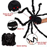 "MOMOTOYS Halloween Decorations (2 Halloween Spiders + 1 Web) 30""Giant Spiders 11.8ft Spiderweb Decoration Round Outdoor Halloween Decorations Props For Halloween Party Themes Yard Indoor Decoration"