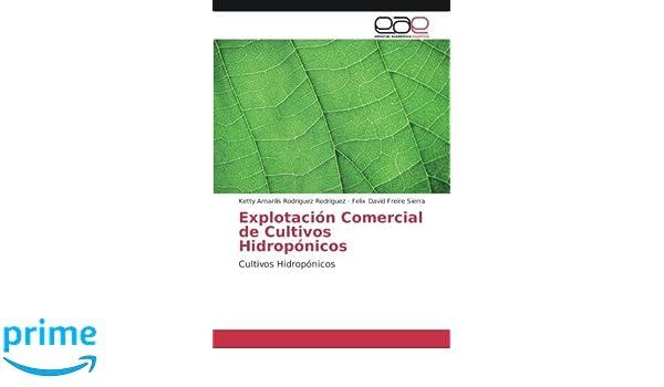 Explotación Comercial de Cultivos Hidropónicos: Cultivos Hidropónicos (Spanish Edition): Ketty Amarilis Rodriguez Rodriguez, Felix David Freire Sierra: ...