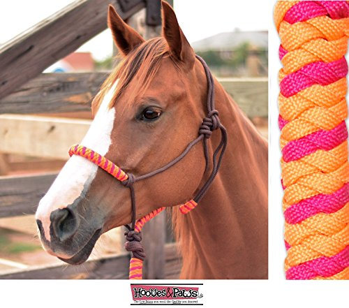 CLASSIC EQUINE NYLON ROPE HALTER WITH LEAD AND POPPER ALL NEW COLORS (Orange-Fuchsia) Classic Nylon Halters