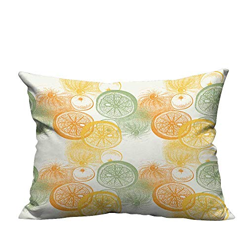 YouXianHome Super Soft Pillowcase Wallpaper Drawn Oranges Citrus Draw Pen Ink Paper Fruit Resists Wrinkles(Double-Sided Printing) 19.5x26 inch