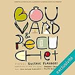 Bouvard et Pécuchet | Gustave Flaubert,Vincent Colin