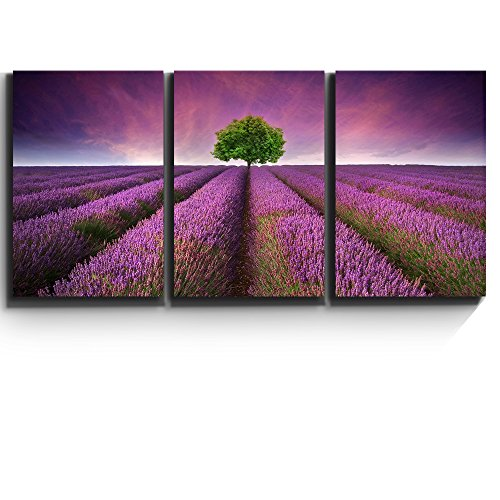 """3 Piece Canvas Print - Contemporary Art, Modern Wall Decor - Lavender field rows and a lone tree - Giclee Artwork - Gallery Wrapped Wood Stretcher Bars - Ready to Hang- Wall26 - 24""""x36""""x3 Panels"""