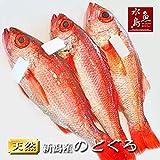 魚水島 のどぐろ 新潟・日本海産 ノドグロ 400g以上・3尾(生冷凍)