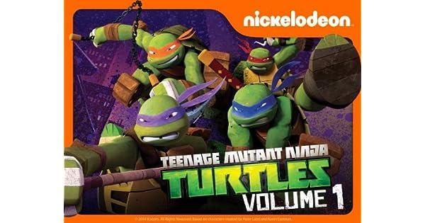 Amazon.com: Teenage Mutant Ninja Turtles Volume 1: Jason ...