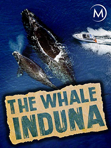 Whale Note - The Whale Induna