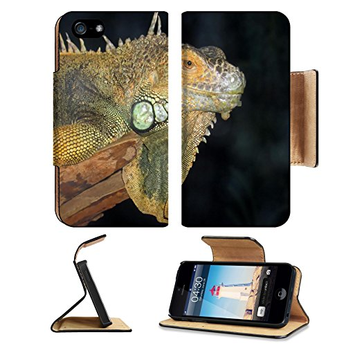 Liili Premium Apple Iphone 5 Iphone 5S Flip Pu Leather Wallet Case A Macro Shot Of A Beautiful Iguana Iphone5 Photo 530241 Simple Snap Carrying