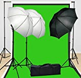 Fancierstudio Lighting Kit 3 Point Lighting Kit With Three 6'x9' Muslin Backdrop And Background Stand By Fancierstudio FH4046