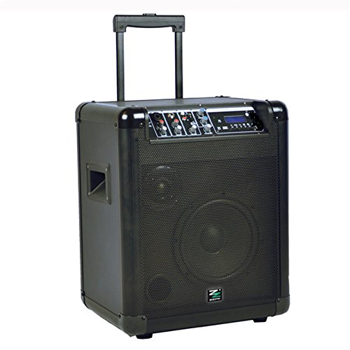 CASSA PROFESSIONALE AMPLIFICATA TRASPORTABILE A BATTERIA con Bluetooth MP3 KARAOKE DJ
