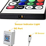 Daybetter 2 Ports Remote Control