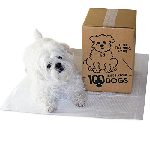 100 Things About Dogs Absorbent Dog Training Pads with Back Adhesive - 50/Bag
