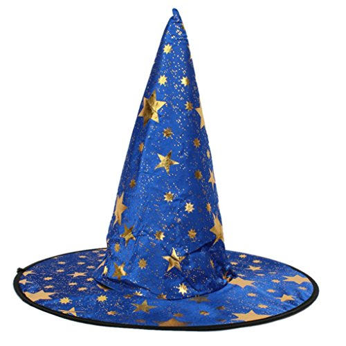 Shubuy Unisex Adult Witch Hat For Halloween Costume Accessory Stars Print Cap (Blue)