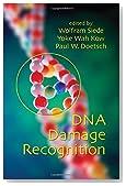 DNA Damage Recognition
