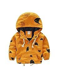 Happy Cherry Baby Boys Wind Jacket Hoodies Cartoon Printing Hooded Coat Yellow