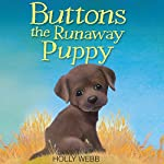 Buttons the Runaway Puppy | Holly Webb