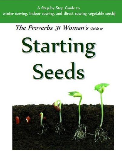 Starting Seeds (Seed Starting for Beginners)