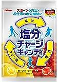 カバヤ 塩分チャージキャンディ 110g×10袋