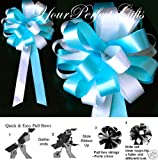 10 TEAL BLUE WHITE WEDDING 8'' PEW BOW BRIDAL DECORATION