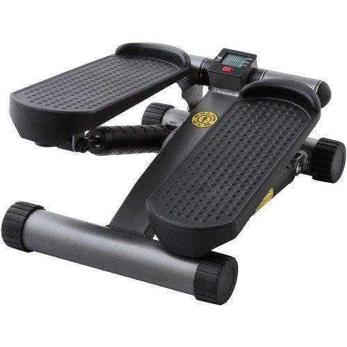 (Gold's Gym Mini Stepper)