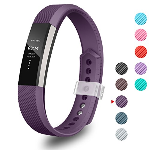 GreenInsync Compatible Fitbit Alta Band with Metal Clasp,Replacement for Fitbit Alta Bands Small Alta Bracelet Strap for Fitbit Alta/Fitbit Alta HR/Fitbit Ace(Plum)