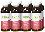 RUNA Clean Energy Organic Guayusa Iced Tea Hibiscus Berry 169 Ounce Pack of 12 Discount